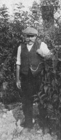 William Robert Baxter
